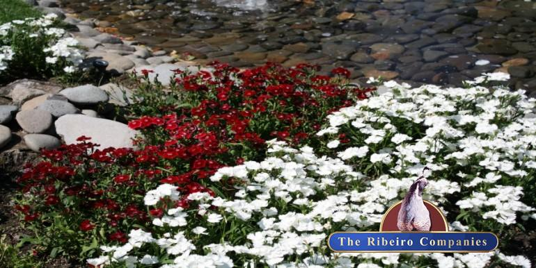 6490 S. McCarran Floral Landscaping 900x451
